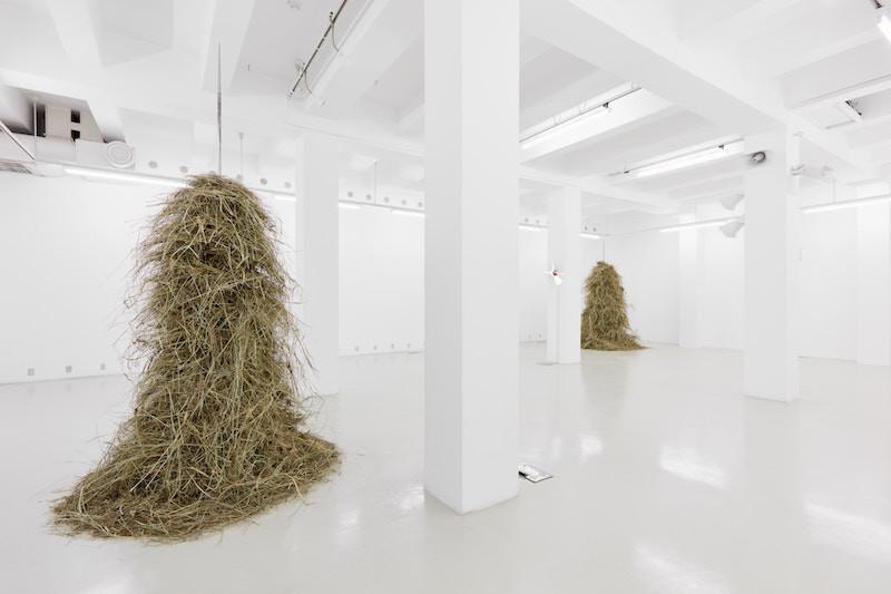 Exhibition view | photo: Dávid Biró)