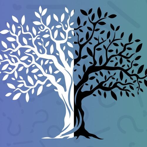 Gondolat Generátor: A Tudás-Nemtudás fája
