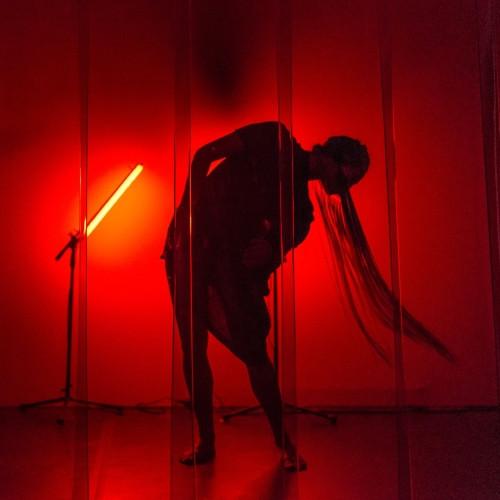 Vass – Barna – Mákó: Urform - performansz installáció