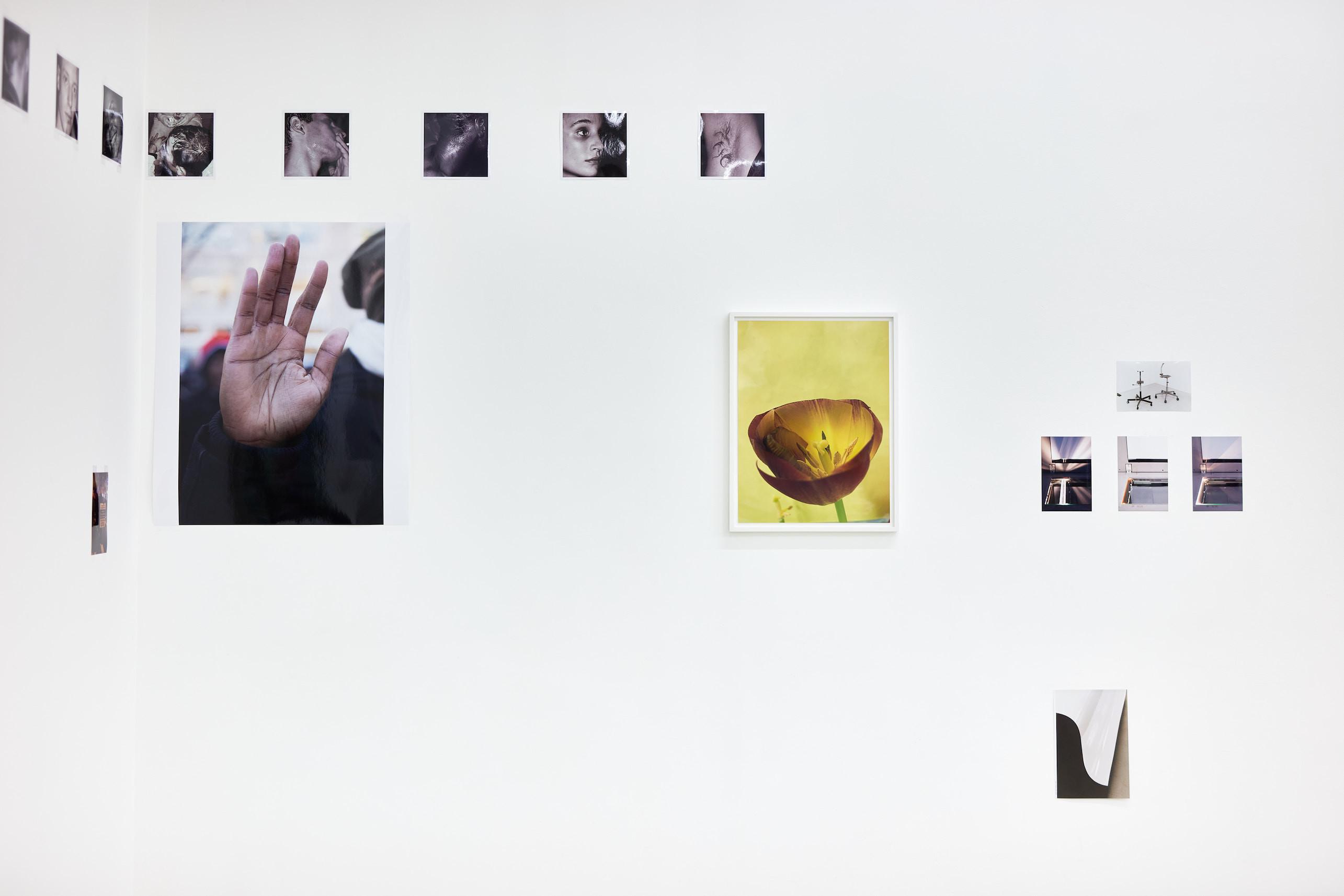 Wolfgang Tillmans: A te tested a tiéd . Kiállítási látkép, Trafó Galéria, 2021. Balra: Black Lives Matter protest, Union Square, b, 2014. Jobbra: Clipped Tulip, 2020. Fotó: Biró Dávid