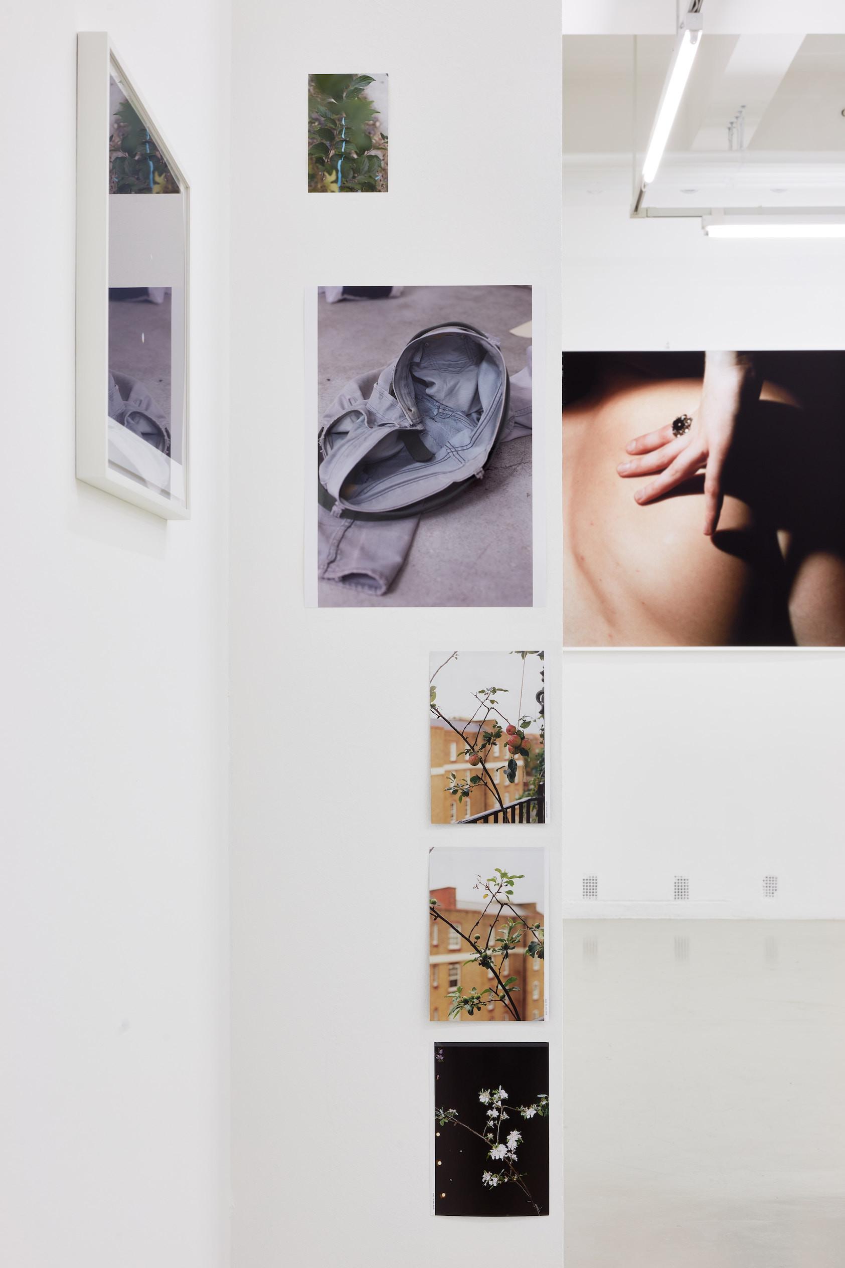 Wolfgang Tillmans: A te tested a tiéd . Kiállítási látkép, Trafó Galéria, 2021. Fentről a második: grey jeans, inside, 2012. A háttérben: Omen, 1991. Fotó: Biró Dávid